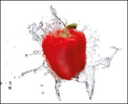 A lovely red pepper with water will look great near any food preparation area. A lovely printed glass kitchen splashback. An artistic printed glass kitchen splashback to set off any food preparation area in your kitchen.