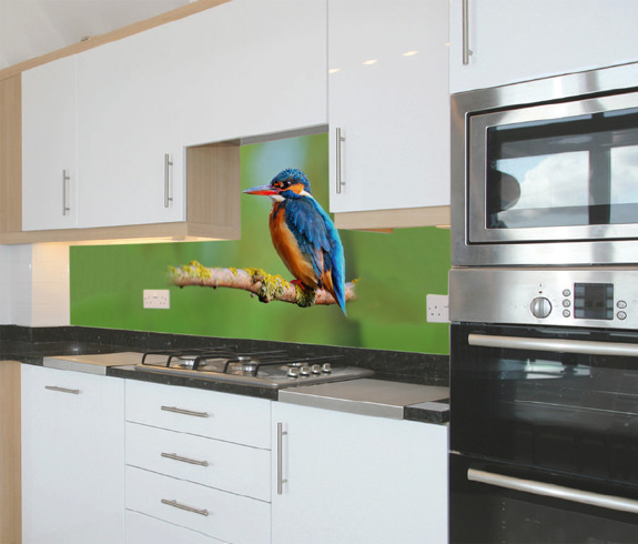 Animals printed kitchen splashbacks